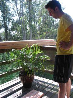 Matt.planterbox1